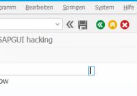 Hacking SAPGUI